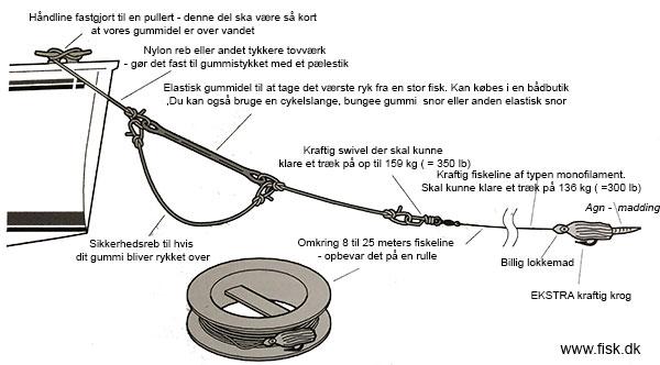 fiske dk